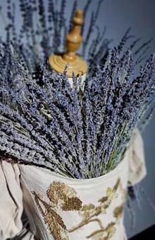 Detail of white dress embroidered with gold thread and with a large bundle of lavender protruding from the neck